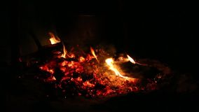 Bonfire in the night stock footage