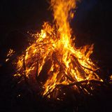 Bonfire in the night stock photo