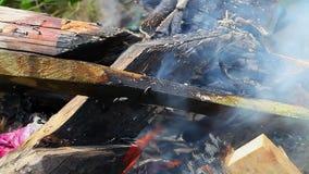 Bonfire at outdoor stock video