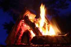 A bonfire over the dark trees on blue sky extrim closeup Royalty Free Stock Photo