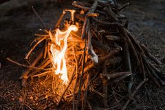 Bonfire preparation tourism nature forest concept. Hiking spirit Royalty Free Stock Image