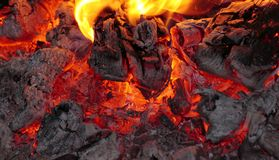 Bonfire red heat close up. With flames, charred wood and ash Royalty Free Stock Images