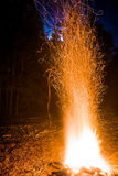 Bonfire sparks at long exposure. Campfire in the forest at night Stock Image