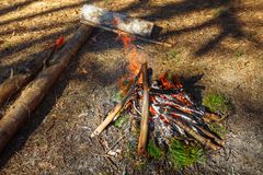 Bonfire in the spring forest. Near the ax royalty free stock photos