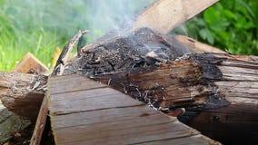 Bonfire start burning at outdoor stock video footage