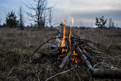 Bonfire in the steppe Stock Photography