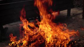 Bonfire on the street, flame, fire. Bonfire on the street, flames of the fire, the flame burns. Leaf burning stock video footage