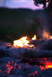 Bonfire with tongues of flame Stock Photos