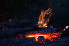 Bonfire with tongues of flame Stock Photography
