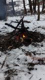 The bonfire in the winter forest royalty free stock images