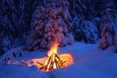 Bonfire in the winter forest illuminates the snow. Stock Photography
