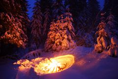 Bonfire in the winter forest illuminates the snow. Royalty Free Stock Photos