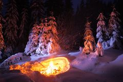 Bonfire in the winter forest illuminates the snow. Royalty Free Stock Images