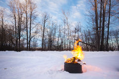 Bonfire in winter stock photography