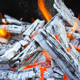 Bonfire and wood coal Stock Photos