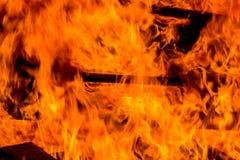 Bonfire of wood pallets Stock Image