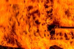 Bonfire of wood pallets Royalty Free Stock Image