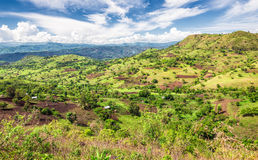 Bonga forest reserve in southern Ethiopia. View of the Bonga forest reserve in southern Ethiopia royalty free stock photo