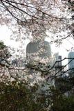 Bongeunsa, Сеул, Южная Корея Стоковые Фотографии RF