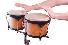 Bongo Royalty Free Stock Photos