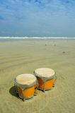 Bongo on the beach Royalty Free Stock Photo