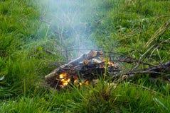 bongos Πράσινη χλόη Στάση στο πεζοπορώ Καπνός της φωτιάς Στοκ Φωτογραφίες