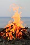 bongos Στοκ φωτογραφία με δικαίωμα ελεύθερης χρήσης