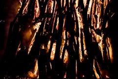 bongos Στοκ Εικόνες