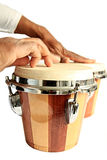 Bongos. Image of bongo on white background Royalty Free Stock Photos