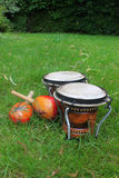 Bongos and maracas on grass Stock Images