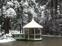 Bonheur d'hiver Photographie stock libre de droits