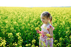 Bonheur jaune Photographie stock