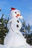Bonhomme de neige avec le chapeau, le nez de raccord en caoutchouc et l'écharpe Images libres de droits