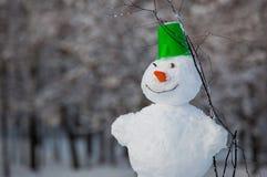 Bonhomme de neige d'amusement en parc Photos stock