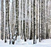 Bonhomme de neige dans la forêt de bouleau d'hiver Photographie stock