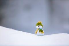 Bonhomme de neige dans le chapeau et l'écharpe intéressants avec le nez rouge Photo libre de droits