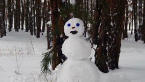 Bonhomme de neige dans un pin Forest Standing Outdoors banque de vidéos