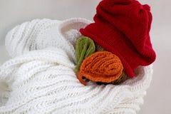 Bonhomme de neige de Noël de l'écharpe blanche, du chapeau rouge et de la feuille Photos libres de droits