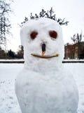 Bonhomme de neige effrayant avec des cheveux Images stock