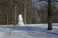 Bonhomme de neige en stationnement Photographie stock libre de droits