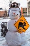 Bonhomme de neige fou de koala Image libre de droits