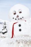 Bonhomme de neige géant Image libre de droits