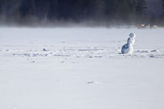 Bonhomme de neige isolé sur le milieu d'un lac congelé Images stock