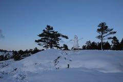 Bonhomme de neige sur la colline Images stock