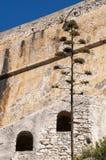 Bonifacio, Корсика, Corse, Corse-du-юг, южный, Франция, Европа, остров Стоковые Фотографии RF