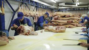People prepare fresh meat for delivery to stores. stock video footage