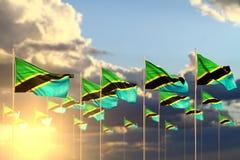 Bonito alguma ilustração da bandeira 3d da celebração - muitas bandeiras de Tanzânia no por do sol colocado na fileira com foco s ilustração royalty free