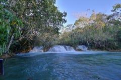 Brazil Bonito. River in Bonito, Mato Grosso do Sul, Brazil Royalty Free Stock Photography