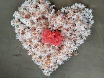 Bonito, flores, fundo, vermelho, o mais bonito foto de stock