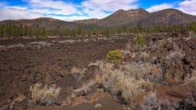 Bonito Lava Flow på den nationella monumentet för solnedgångkrater Arkivfoto